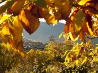 otoño_candelario-21-390x242[1]